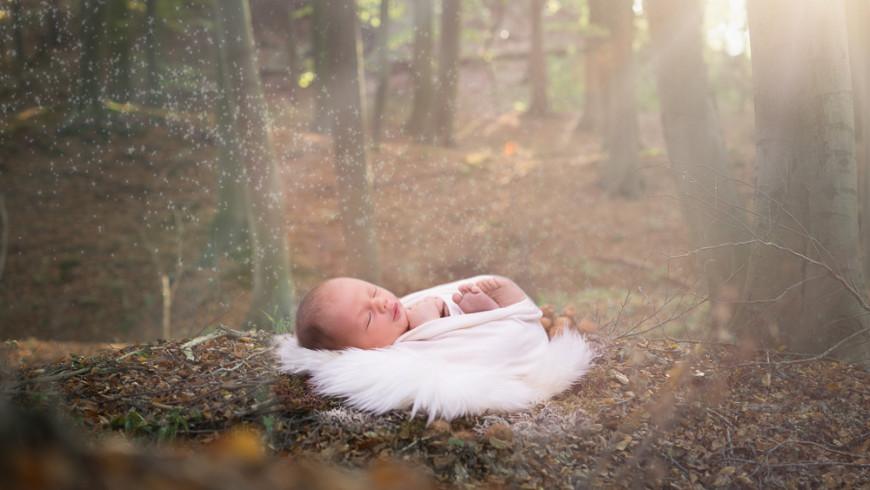 Neugeborene Baby Fotoshooting Oldenburg