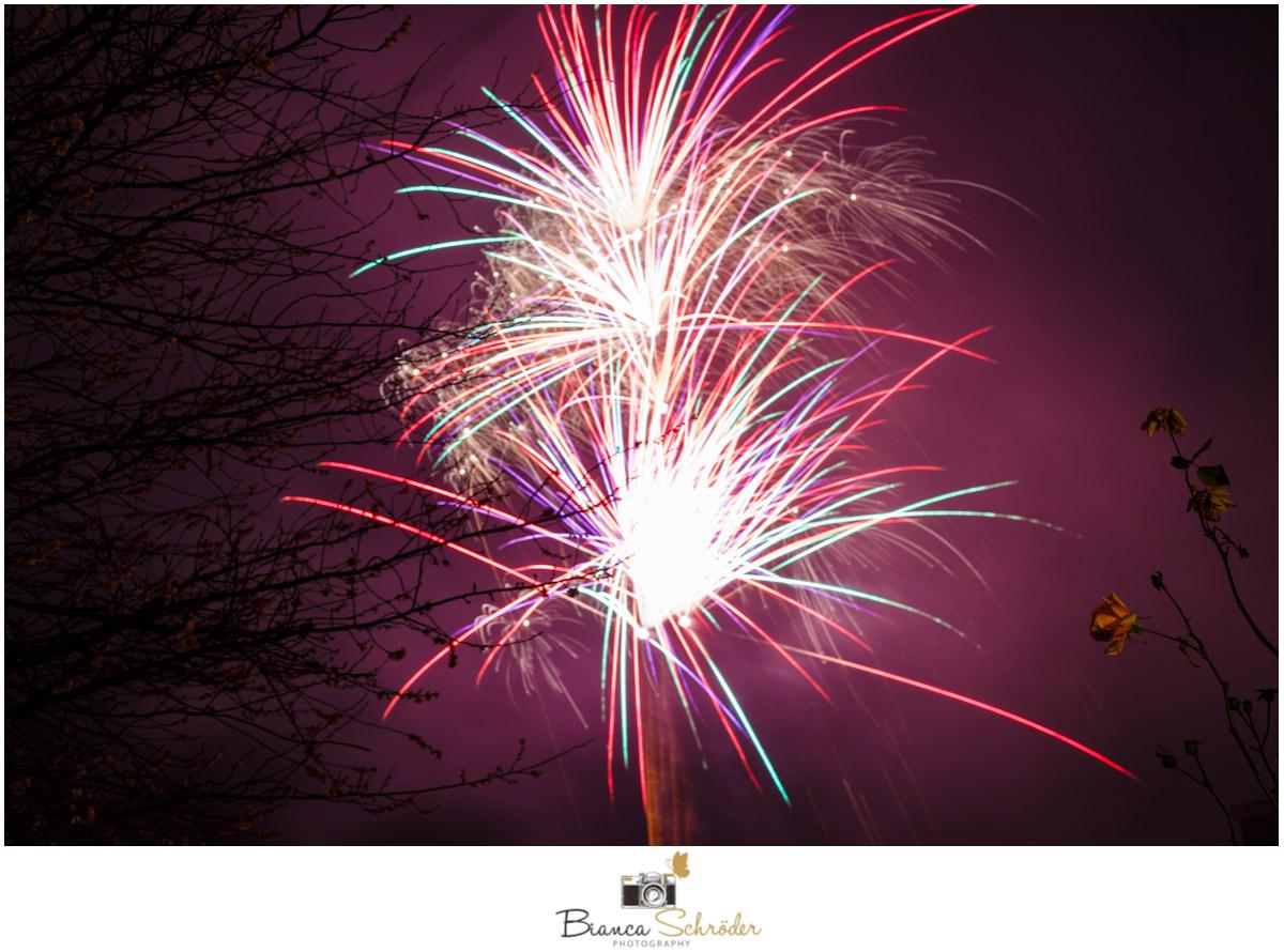 Frohes neues Jahr - Fotostudio SchröderFotostudio Schröder